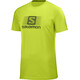 Salomon Blend Logo SS Tee Men acid lime